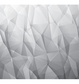 Abstract monochromatic background made from vector image vector image