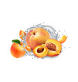apricots and peaches and a splash milk or vector image