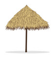bamboo beach umbrella isolated on white vector image vector image