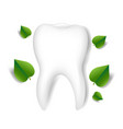 dental clinic logo with green leaves and white vector image