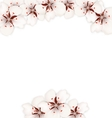 Frame with Sakura Flowers Blossom vector image