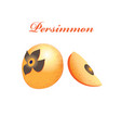 orange sweet persimmon vector image vector image