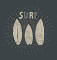 vintage label hand drawn surf boards grunge vector image