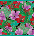 exotic tropical flowers seamless pattern vector image