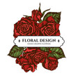 floral bouquet design with colored roses vector image