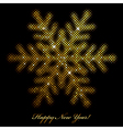 glowing snowflake vector image vector image