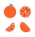 grapefruit icon symbol set eps10 vector image