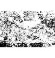 grunge black texture on white background use vector image vector image