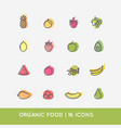 linear icons of fruits vector image