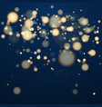 shining bokeh isolated on transparent background vector image vector image