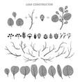 big set of leaf flower branch fall spring vector image vector image