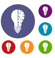 brain lamp icons set vector image vector image