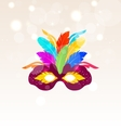 Colorful Carnival Mask with Feathers on Glowing vector image vector image