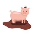 cute pig animal domestic vector image