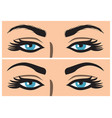 eyebrow before and after correction vector image vector image
