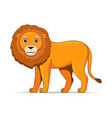 lion animal standing on a white background vector image