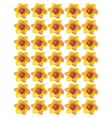 Narcissus flower pattern vector image