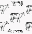 seamless farm pattern graphical cow vector image