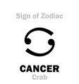 astrology sign of zodiac cancer the crab vector image