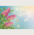 branch of a blossoming lilac vector image