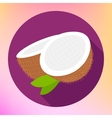 Coconut sign Coco food Icon vector image