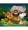 Different types of wild animals in park vector image vector image