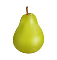 green pear on a white background vector image