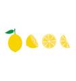 lemon fruit icons symbols set vector image vector image