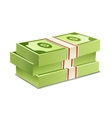 Pack of bank notes vector image