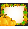 Pumpkins with autumn leaves vector image