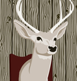stuffed deer head vector image vector image