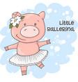 a cute cartoon pig on a blue vector image