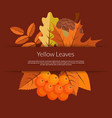 cartoon autumn elements and leaves banner vector image