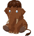 cartoon baby mammoth sitting vector image vector image