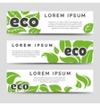 Eco banners template with green leaves vector image