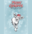 funny chihuahua in santa hat merry christmas vector image