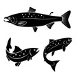 salmon logo vector image vector image