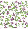 seamless pattern with fumewort corydalis solida vector image vector image