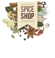 spice shop paper emblem with different spices vector image vector image