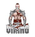 viking col 0001 vector image