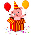 pig cartoon coming out of gift box vector image