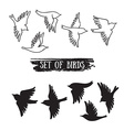 Birds flying in the sky black icons vector image