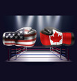 boxing gloves with prints of the usa and canadian vector image vector image