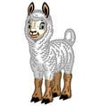 cartoon alpaca vector image