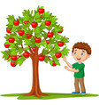 cartoon boy picking apples from apple tree vector image vector image