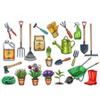 gardening tools and flowers vector image vector image
