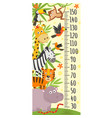 growth measure with jungle animals vector image