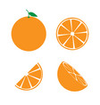 orange fruit icon symbol set vector image vector image
