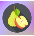 Red apple pear flat icon vector image vector image