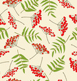 red rowan berry seamless pattern vector image